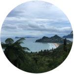 Q&A / Coaching / Kiesiel: Foto eines Strandes an der Nordwestseite der Coromandel-Halbinsel von Nord-Neuseeland als Symbol für die Sitzungsreise
